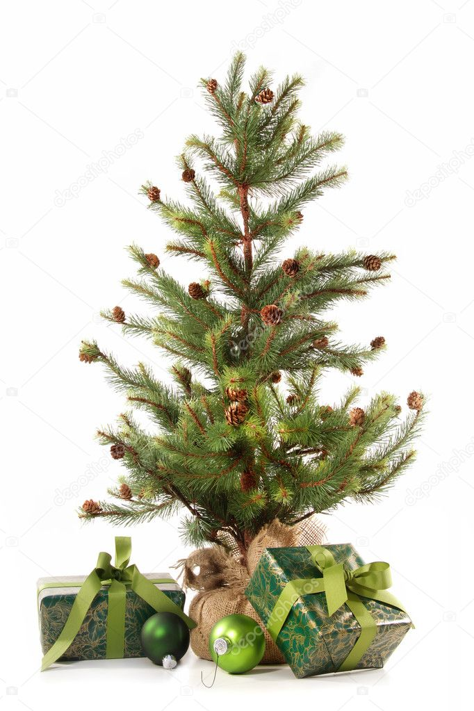 Little Christmas tree with gifts on white background  Stock Photo #4340707
