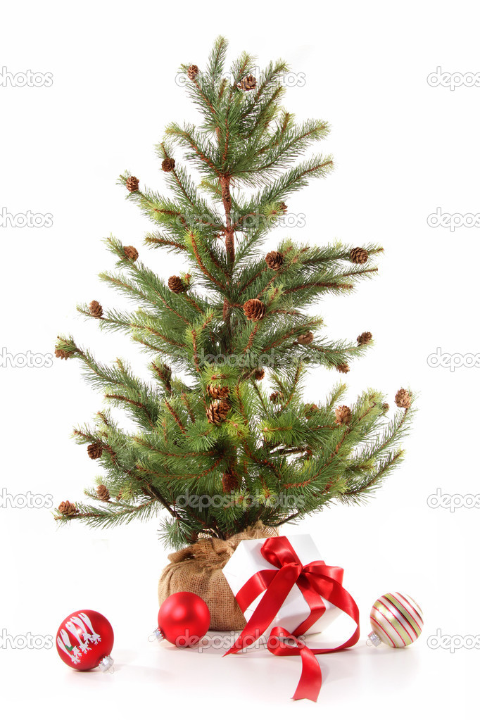 Little Christmas tree with red ribbon gifts on white background — Stockfoto #4340709