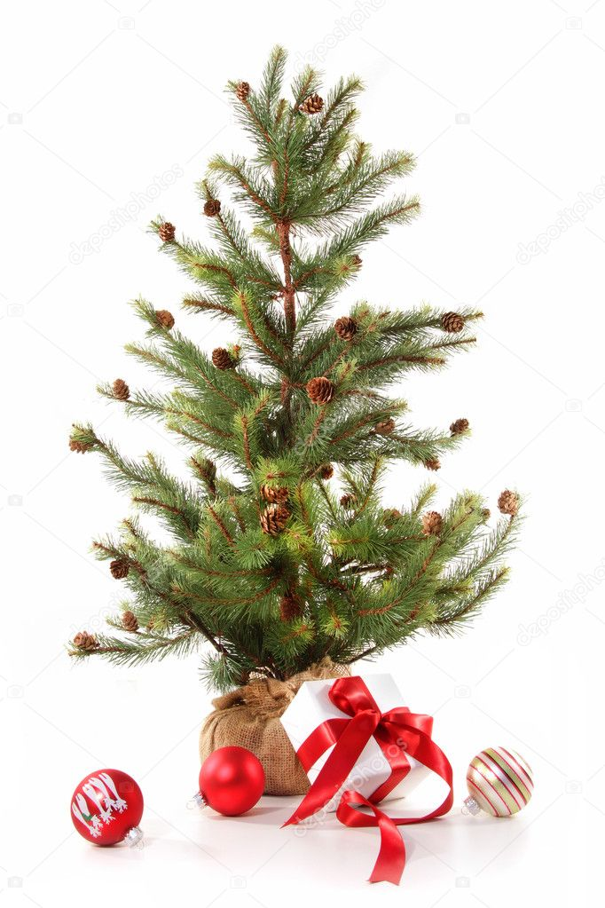 Little Christmas tree with red ribbon gifts on white background — Stock fotografie #4340709