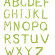 Stock Photo: Alphabet letters of green grass isolated on white