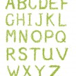Alphabet letters of green grass isolated on white — Stock Photo
