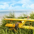 Vintage toy plane in tall grass at the beach - Stock Photo