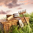 Wicker basket with garden tools in grass — Стоковая фотография