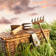 Wicker basket with garden tools in grass — Stock Photo
