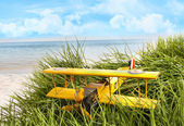 Vintage toy plane in tall grass at the beach — Stock Photo