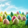 Colorful Easter eggs in a field of grass — Stockfoto