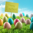 Colorful Easter eggs with sign in a field — Stock Photo #5042691