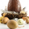 Stock Photo: Big chocolate easter egg in nest with feathers