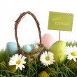 Easter eggs with  basket in the grass - Stock Photo