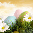 Closeup of decorated easter eggs in the grass with flowers — Stock Photo #5042717