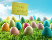 Colorful Easter eggs with sign in a field — Stock Photo