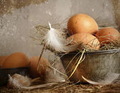 Brown speckled eggs in old tin bowl — Stock Photo