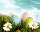 Decorated easter eggs in the grass with daisies — Stok fotoğraf