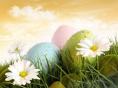 Closeup of decorated easter eggs in the grass with flowers — Stock Photo