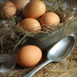 Fresh brown eggs in old tin container with spoon — Stock Photo