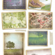 Collection of seasonal photos in vintage frames - Stock Photo