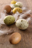 Speckled easter eggs on wooden table — Stock Photo