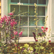 Old cottage with summer garden — Stock Photo