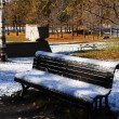 Lonely park bench with snow. — Stock Photo #4620803