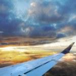 Golden Flight — Stock Photo #4024300