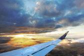 Golden Flight — Stock Photo