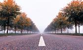 Autumn Path — Stock Photo