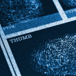 Stock Photo: Thumb Fingerprint File