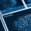 Thumb Fingerprint File — Stock Photo