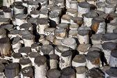 Sawn birch logs — Stock Photo
