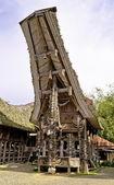 Tradizionale villaggio toraja — Foto Stock