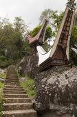 традиционные toraja кладбище — Стоковое фото