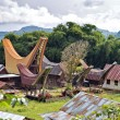 Toraja Traditional Village — Stock Photo