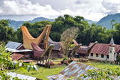 Toraja Traditional Village — Stock Photo