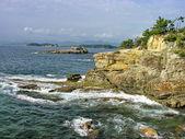 Japon deniz — Stok fotoğraf