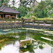 Ubud temple - Stock Photo