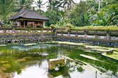 Ubud temple — Stock Photo