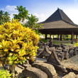 Garden in Prambanan temple site - Stock Photo