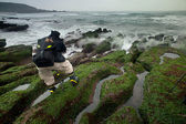 Rocky Seacoast full of green seaweed, long time exposure, Taiwan, East Asia — Stock Photo