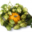 Stock Photo: Green malt grape and little pumpkin