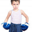 Little dangerous boxer — Stock Photo