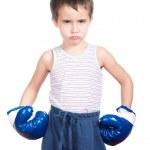 Little dangerous boxer — Stock Photo