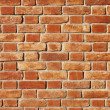 Brick wall — Stock Photo #4036499
