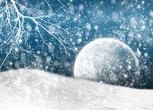 Winter V.1.0 — Stock Photo