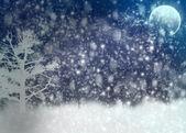 Winter V.4.0 — Stock Photo