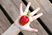 Fragole rosse in un braccio del bambino — Foto Stock
