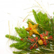 Green spruce with decoration — Stock Photo #4144963