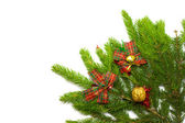 Green spruce with decoration — Stock Photo