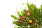 Green juniper branch with decoration — Stock Photo
