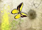 Vlinder aan oude perkament — Stockfoto