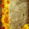 Frame from  sunflower grunge — Stock Photo